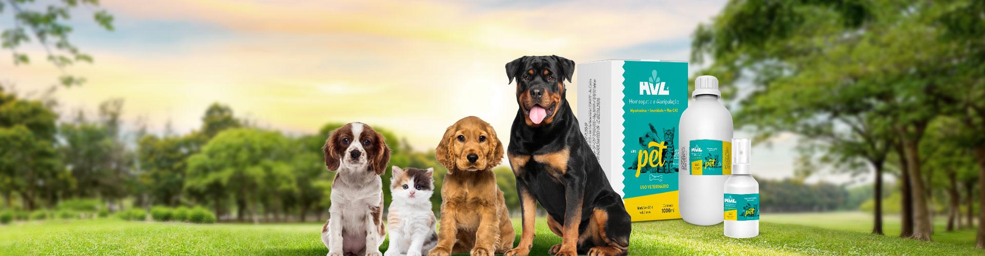 BG-Full-Banner-Pets-